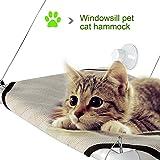 Amazon Com Original Kitty Cot Quot World S Best Cat Perch