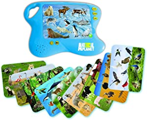 Smart Play Animals of World Learning Pad Interactive Toy