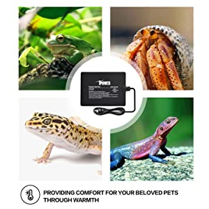 iPower 6 by 8-Inch 8 Watt Reptile Heat Pad Under Tank Terrarium Heater Heat Mat for Small Animals