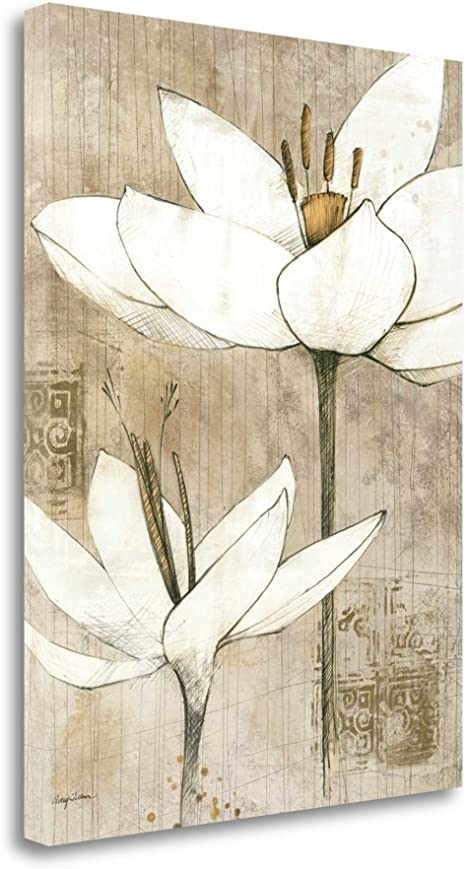 Amazon Com Pencil Floral I By Avery Tillmon Fine Art Giclee Print On Gallery Wrap Canvas Ready To Hang Posters Prints