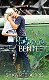 Falling for Bentley