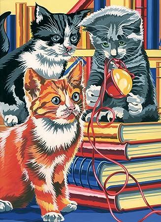 Reeves - Pintar por números Junior, Mediano, Gatos sobre Libros: Amazon.es: Hogar