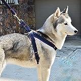 Aodoor Laisses Ceinture de sécurité Pour Chien Fashion Réglable Pet Dog Harnais Corde de Traction L Bleu