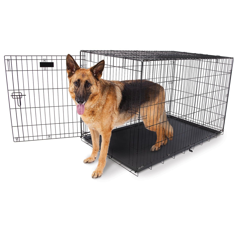 43 W x 28 D x 31 H Aspen Pet 21944 Wire Home Training Dog Kennel, 34  W x 22  D x 25  H