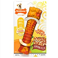 Nylabone Frenzy Giant Pepperoni Pizza Flavor Dog Chew Toy