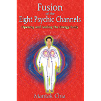 Fusion of the Eight Psychic Channels: Opening and Sealing the Energy Body (English Edition)