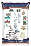 【精米】栃木県産 白米 とちぎの星 5kg 平成29年産