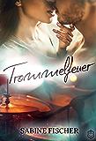 Trommelfeuer (Four Lives 2)