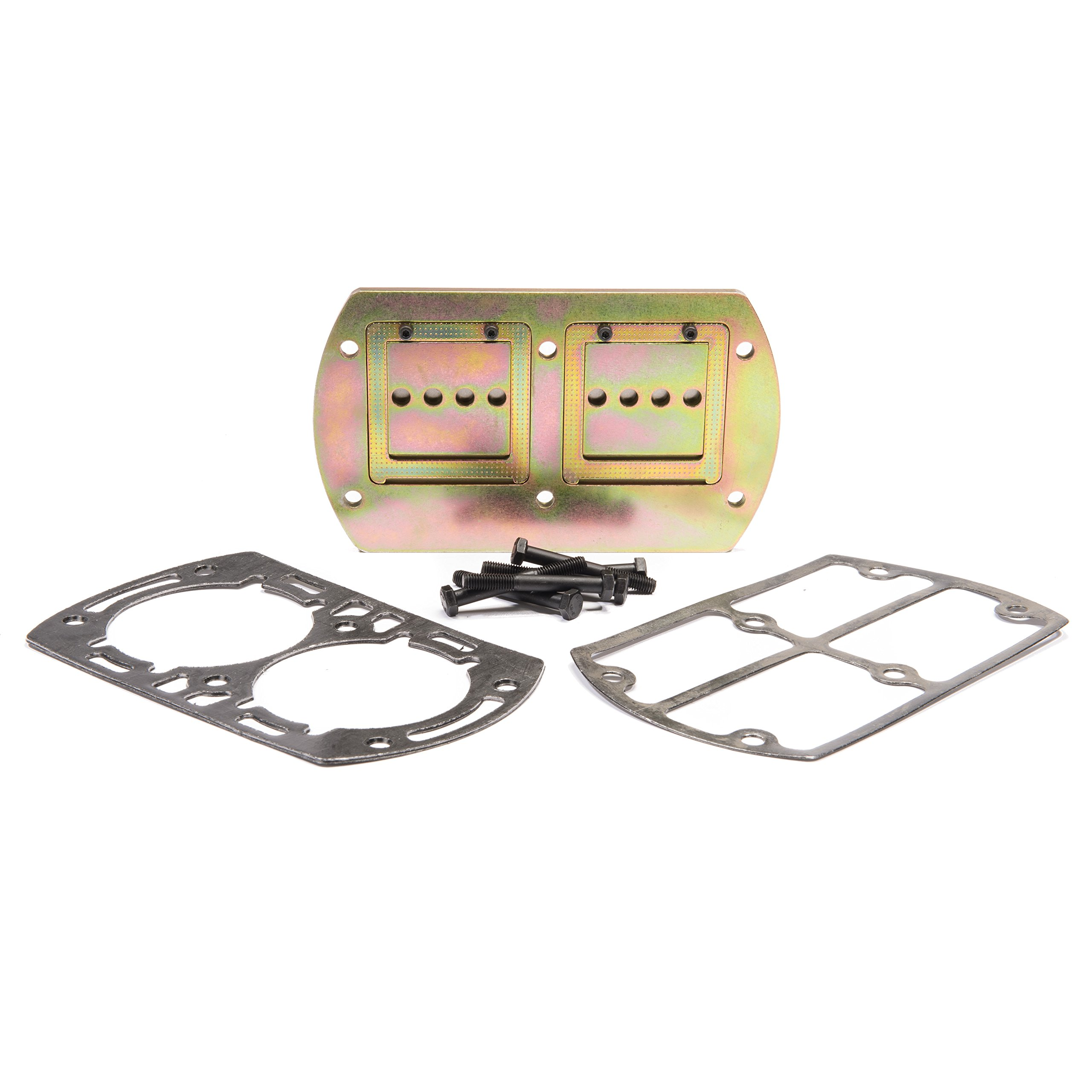 OEM Valve & Gasket Kit for SS5 Compressor by Ingersoll-Rand