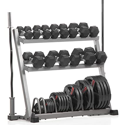 XMark POWERHOUSE 2 Dumbbell Rack and Plate Weight Rack Loaded with 350 lbs. of Hex  sc 1 st  Amazon.com & Amazon.com : XMark POWERHOUSE 2 Dumbbell Rack and Plate Weight Rack ...