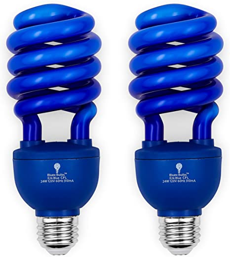 Halloween Bulbs Party Colored CFL 2 Pack BlueX CFL Blue Light Bulbs 24W for Indoor or Outdoor DJ 100-Watt Equivalent Easy Install Decorative Illumination E26 Spiral Replacement Bulbs