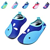 Amazon Price History for:Himal Kids Water Shoes Boys Girls Toddlers Water Shoes Water Proof Socks Beach Shoes For Beach Sporting Swimming (Sea Animals)