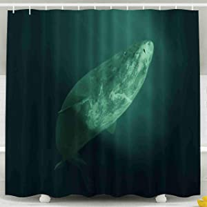 Tooperue Shower Curtain for Bathroom with Hooks Shark Swimming Swims into The Artificial Light Somniosus Microcephalus (3D Illustration) 78×72 Inch,Eco-Friendly,No Oder,Waterproof,Yellow Orange