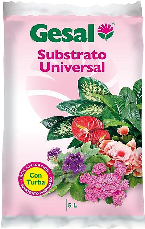 GESAL Compo Substrato Universal, Óptimo Crecimiento de la Planta ...