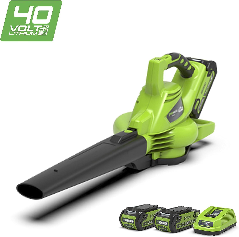 Greenworks Souffleuraspirateur à Feuilles Sans Fil Sur Batterie 40v Lithium Ion Avec 2 Batteries 2ah Et Chargeur 24227uc