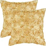 Pack of 2, CaliTime Cushion Covers Throw Pillow Cases Shells 20 X 20 Inches, Solid Stereo Roses Floral, Gold