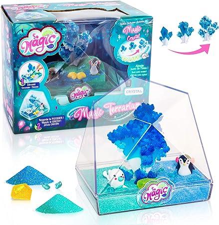 Canal Toys MSG 014 So DIY So Magic - Terrario Mediano, diseño de Cristal: Amazon.es: Juguetes y juegos