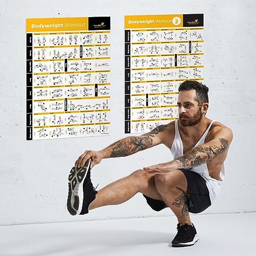 ... Póster laminado - Programa de entrenamiento total - Entrenador Personal Fitness - gimnasio en casa - Póster tonos núcleo, Abs, piernas, glúteos y parte ...