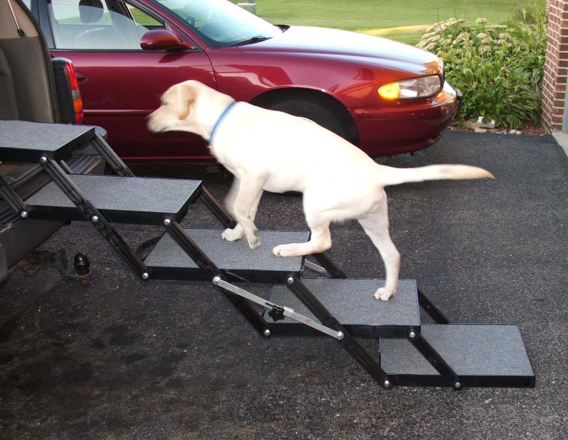 Pet Loader Dog Stairs - Light 16'' 5 Step - for Cars, Trucks, SUV's, Tall Beds & Other Elevated Surfaces - Safe - Collapsible, Portable, Easy to Store by Pet Loader