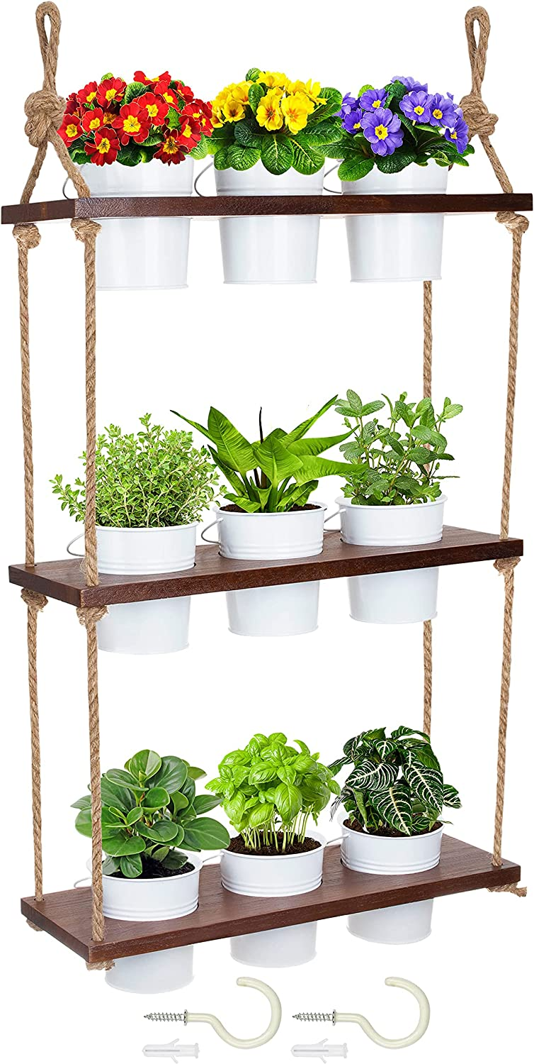 Brick Beetle Hanging Plant Shelf with 9 Plant Pots , Wall Hanging Planter , Window Plant Shelves , Grow a Luscious Hanging Herb Garden , Wall Planter Pot Shelf, Plant Window Shelf , Plant Wall Shelf
