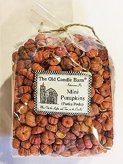 Fall or Autumn Decorating Sparkly Pumpkin Spice Putka Pods or Mini Pumpkins Showers Homestead Studios Weddings Perfect Bowl Filler Craft Project