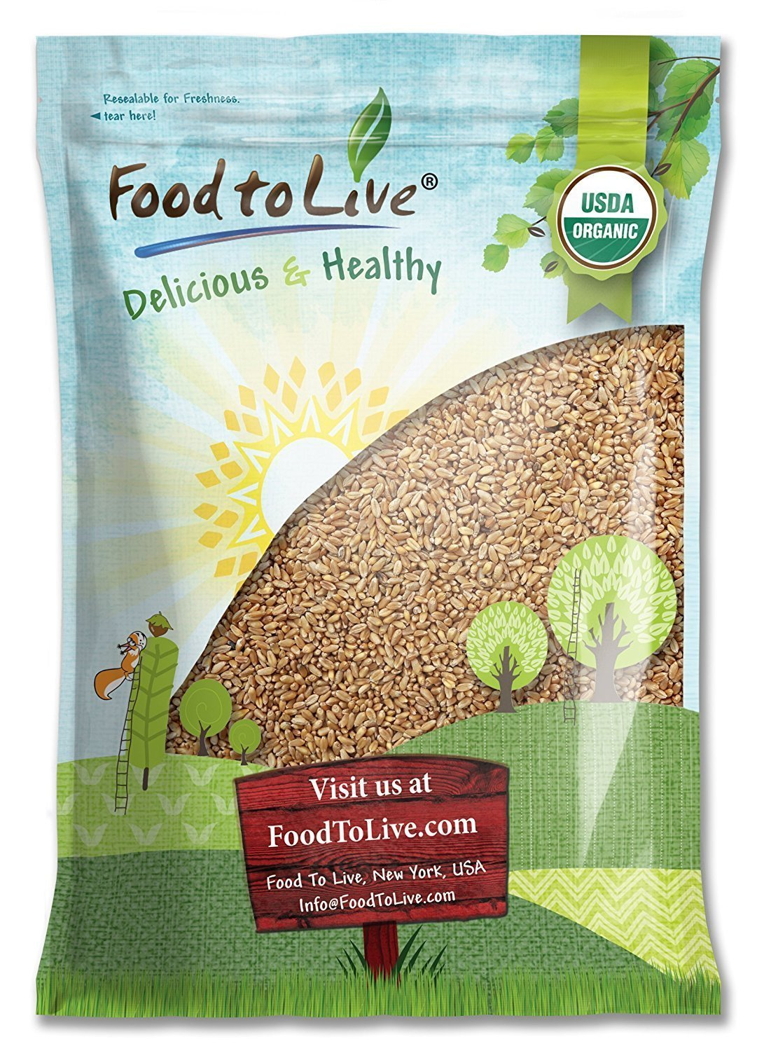 Organic Wheat Berries, 5 Pounds - Non-GMO, Kosher, Raw, Sproutable, Vegan, Sodium and Sugar Free by Food to Live