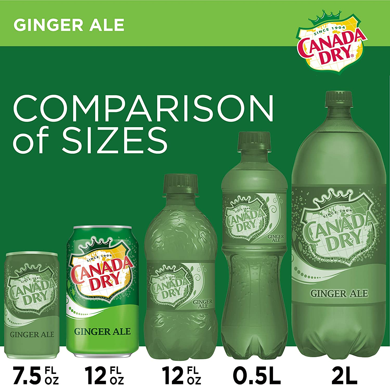 Canada Dry Ginger Ale - Paquete de 12 x 355 ml - Total: 4260 ...