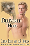 Delivered to Hope (Signed, Sealed, Delivered Book 3)