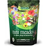 Empathy Mini Meadow Semences pour fleurs sauvages 3 m²
