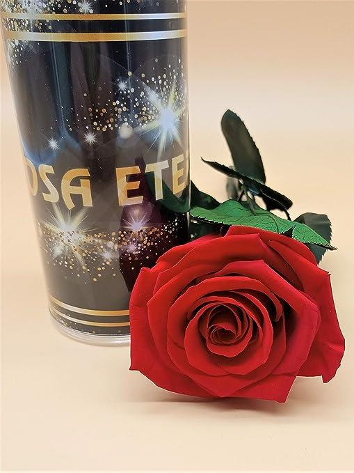 Rosa eterna Rojo Light Extra. Gratis TU ENVÍO. Rosa roja eterna ...