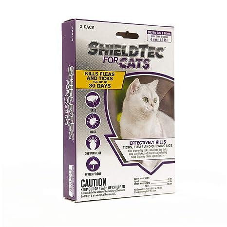Amazon.com: ShieldTec prevención de pulgas y garrapatas para ...