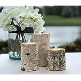 Birch Bark Log Candle Holders - Set of 3 - Votive Tea Light - Rustic