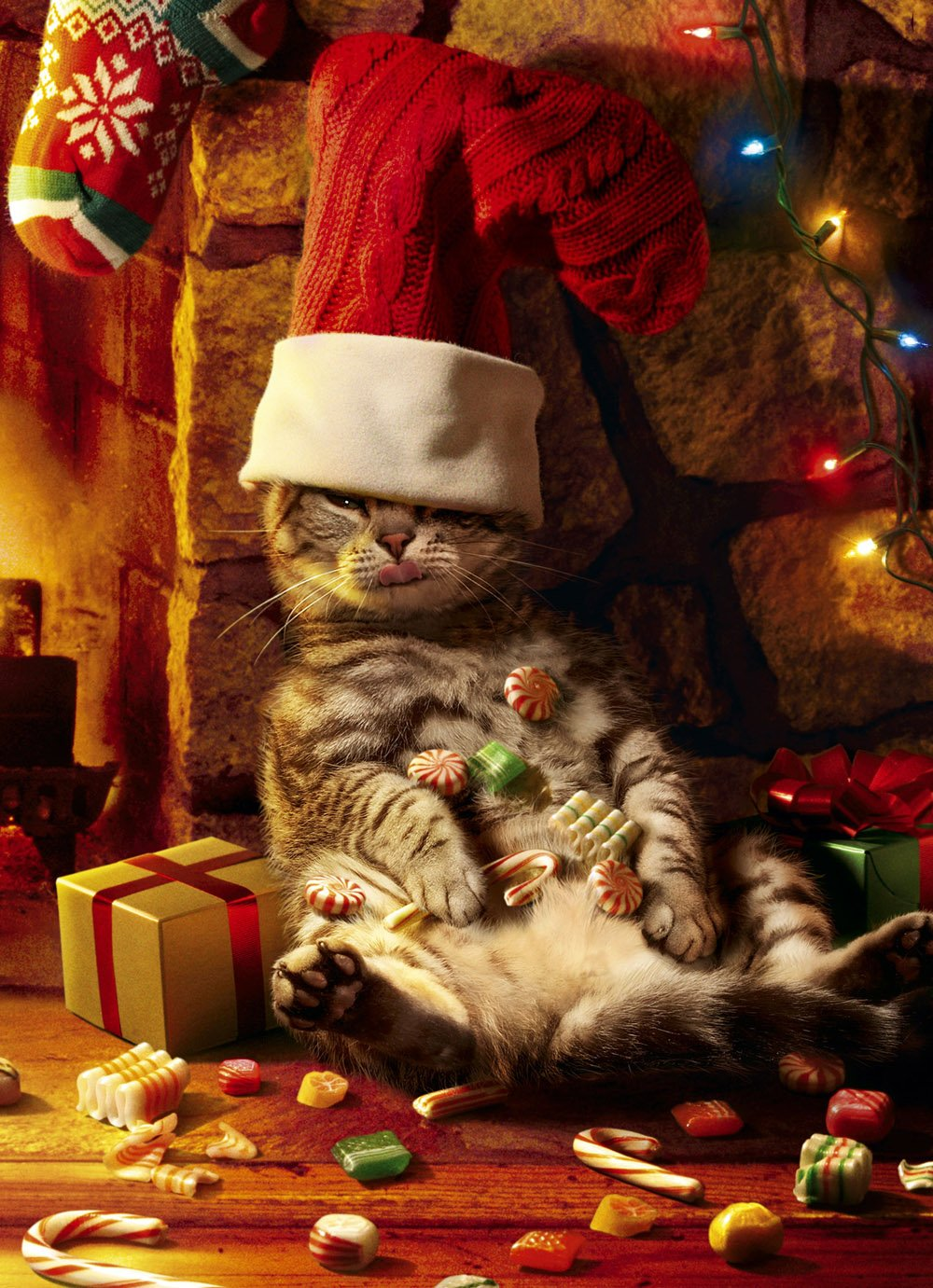 Cat with Christmas Santa Hat Image