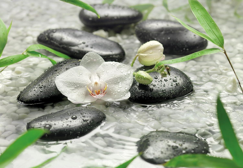 Photo wallpaper PURE, 368cm w x 254cm h, 8 panels, schwarz stones, water, flower, pure Feng Shui, amazing look