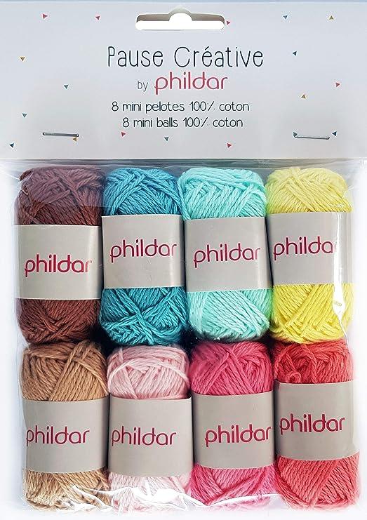 Phildar Pause Créative - Ovillo de Lana (8 ovillos, 10 g, 100 ...