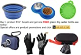 Roysili Dog Bowl with Mat Stainless Steel Water and Food Bowls with Non Skid Non Spill Silicone Base, Premium Quality Dog Bowl Holder for Small Medium Dogs Cats Puppy