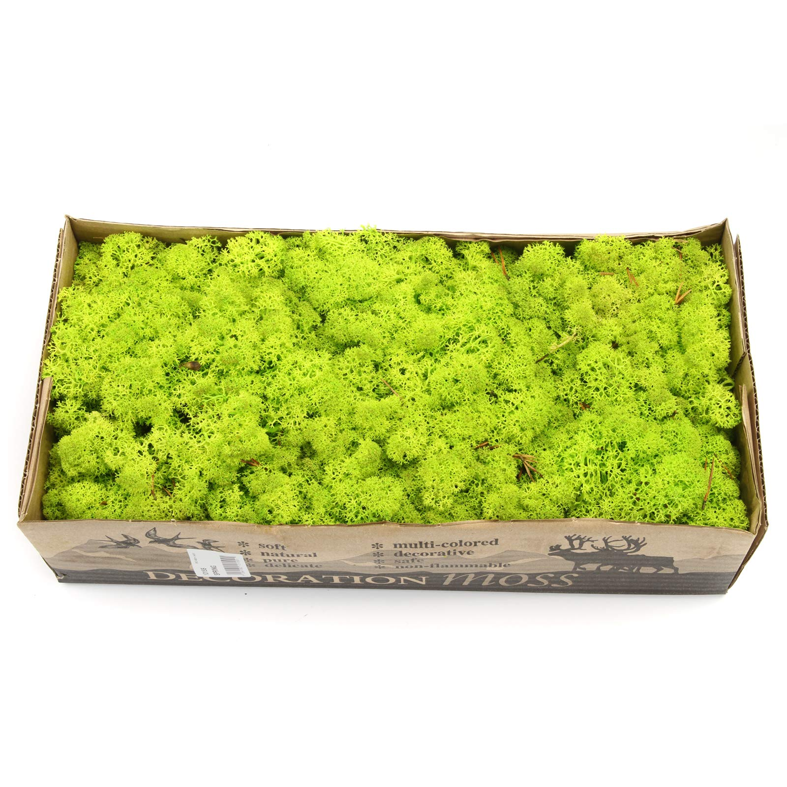 Long-Lasting Naturally Preserved Fresh Dried Forest Green Moss 1.1LB(500G) Bulk Case (Fluorescent Green) by Huayao