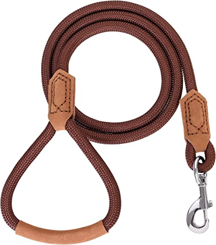 Premium dog leash leash made of climbing rope with rigging in silver