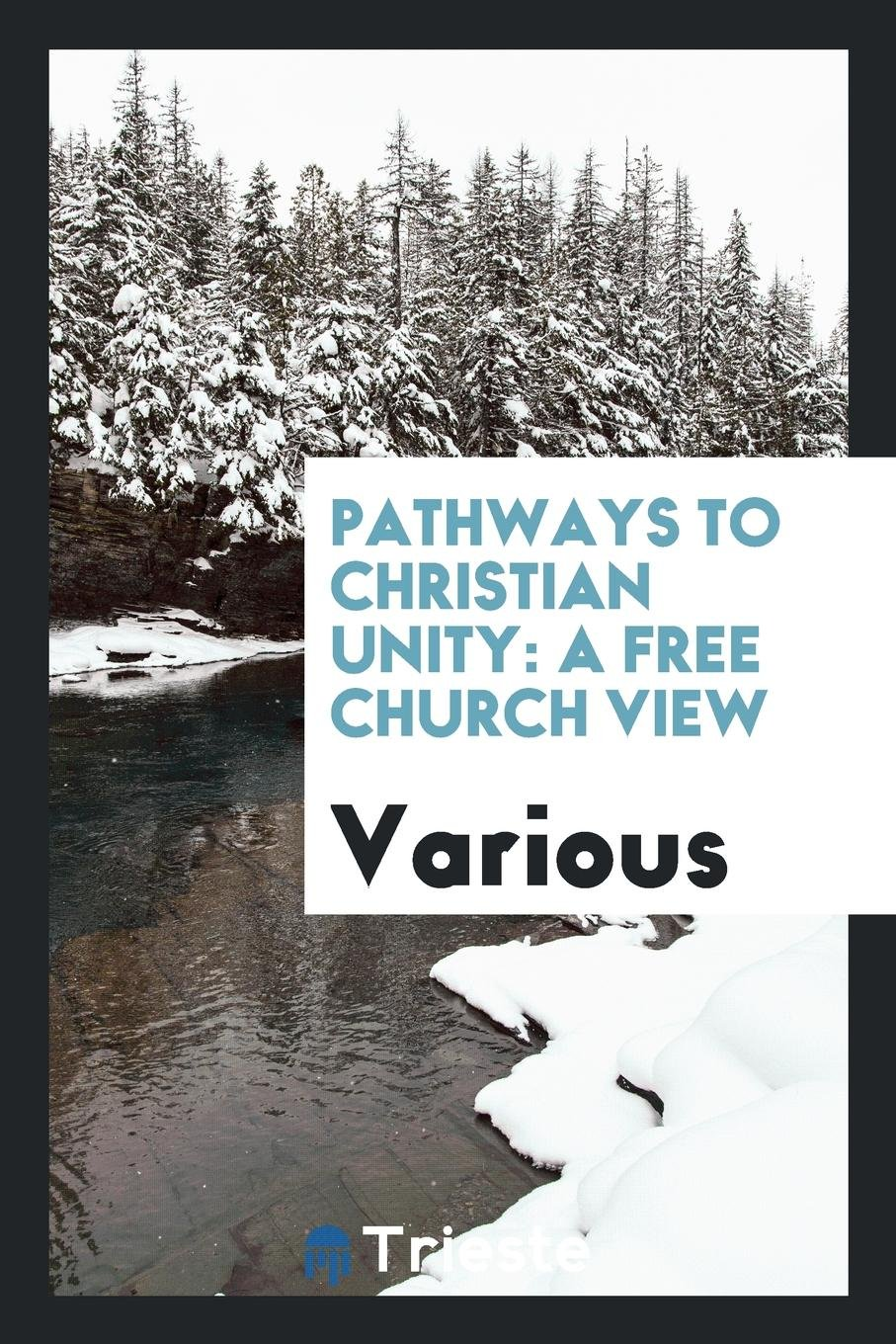 Pathways to Christian unity: a Free Church view: Various