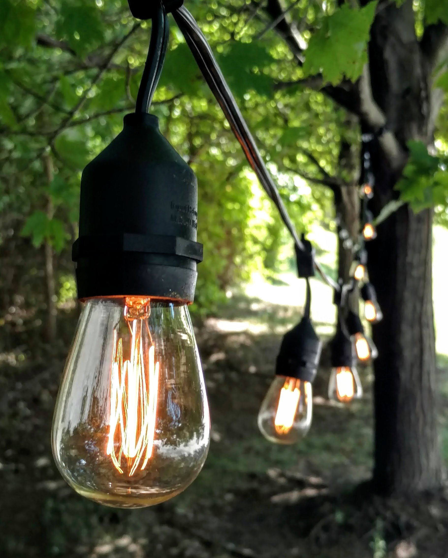 E26 Outdoor Commercial String Lights with Suspended Socket for Weatherproof Heavy Duty Vintage Outside Lighting (100 Foot 50 Socket, S14 Lantern Edison 11 Watt Bulbs)
