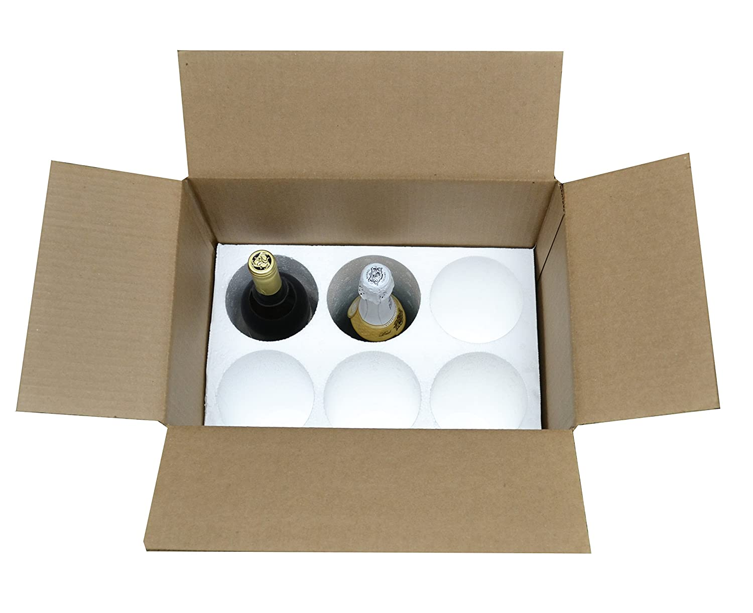 Amazon.com: COOL-06 hielera para 6 botellas, para enví ...
