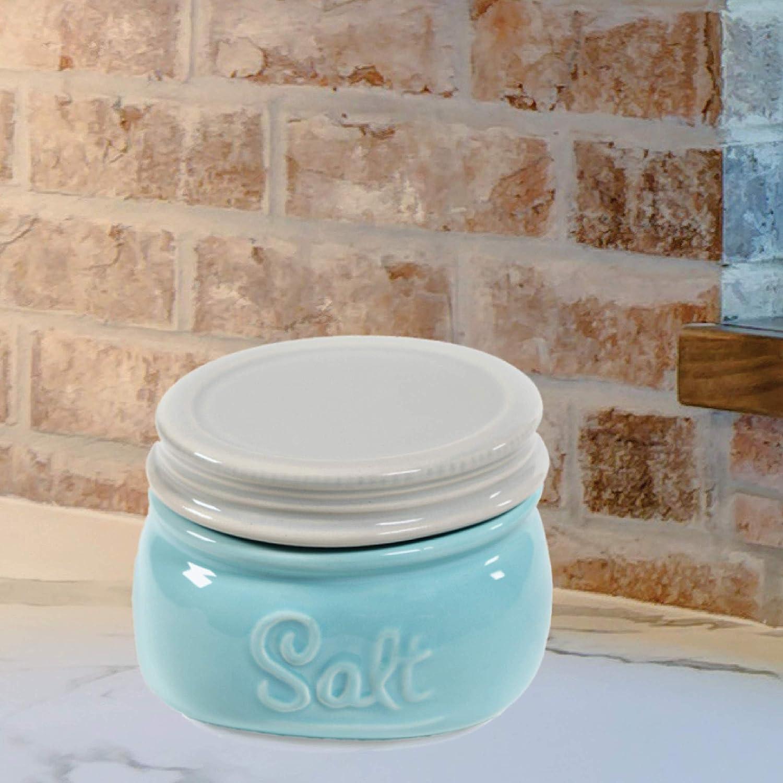 Rustic Farmhouse Decor by Sparrow Decor Mason Salt Cellar Ceramic Salt Cellar With Lid Blue