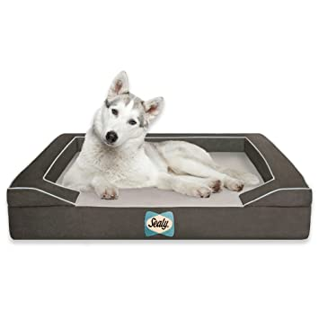 Amazon Com Sealy Dog Bed With Quad Layer Technology Large Modern