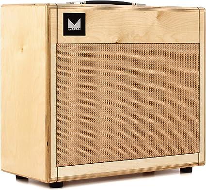 Morgan 112 RA Edition · Pantalla guitarra eléctrica: Amazon.es ...