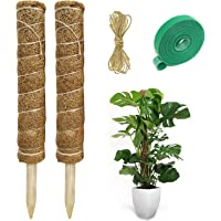 Hongyans 2 Piezas Tutores para Plantas Trepadoras Fibra de Coco Soporte para Plantas Interior Tótem de Coco para…