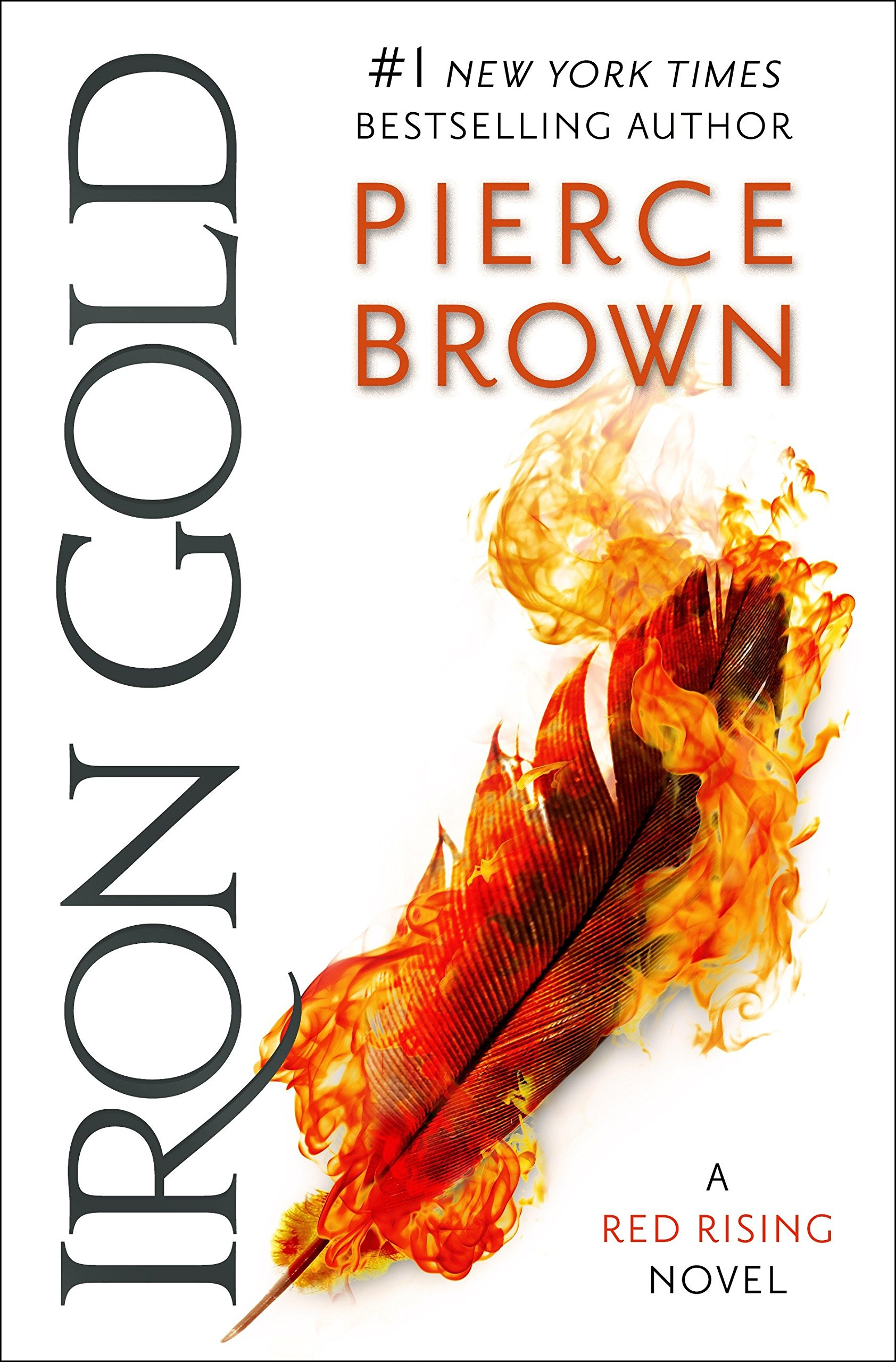 Image result for iron gold book