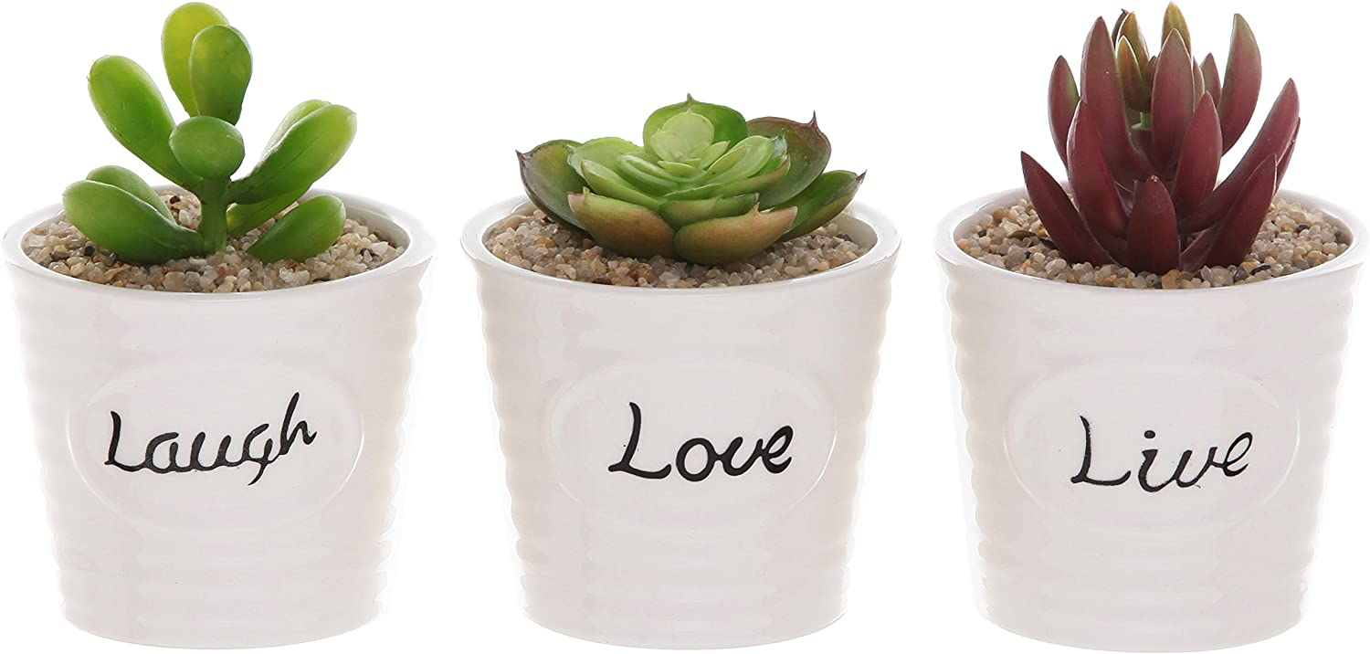Set of 3 White Ceramic Ribbed Design Live Laugh Love Expression Succulent Plant Pot Containers - MyGift