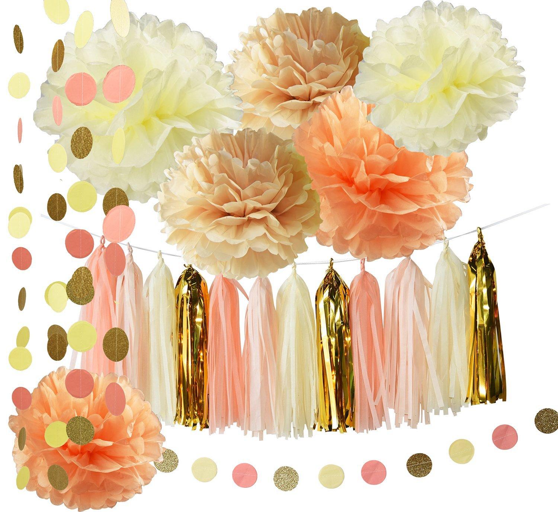 Rustic/Vintage Baby Shower Decorations Birthday Decor Tassel Garland in  Cream Peach Champagne Tissue Paper Pom Pom Circle Paper Garland Girl Bridal  Shower ...