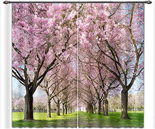 LB Cherry Flower Window Curtains for Bedroom Living Room,Cherry Trees are in Full Bloom Along The Road Teen Kids Room Darkening 3D Blackout Window Drapes 2 Panels,28 by 65 inch Length
