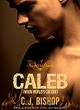 When Worlds Collide (Phoenix Club Book 4)